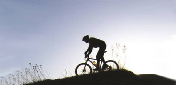 road-king-saddlebag-mounts-5dd1f419dcd66